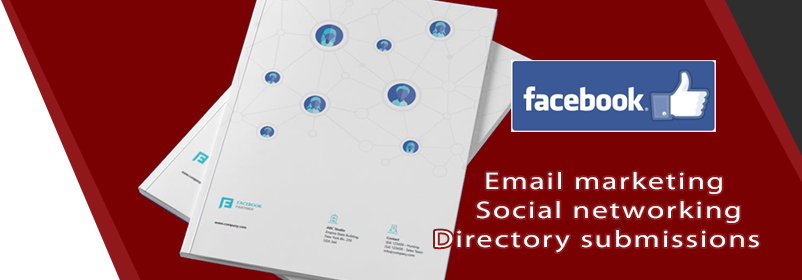 Email marketing, social networking, directory submissions, Facebook